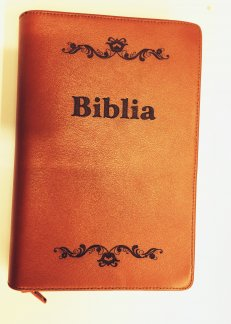 - Biblie de lux , Model Gravat