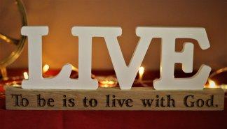 - Obiect decorativ lemn Live