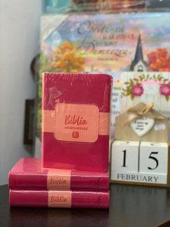 - Biblia adolescentului- coperta rosie